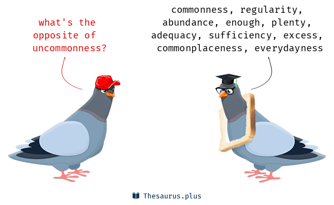 Antonyms for uncommonness