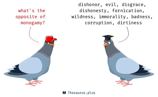 Antonym monogamy