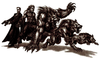 Analysis / Our Werewolves Are Different