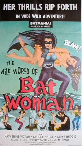 Film / The Wild World of Batwoman