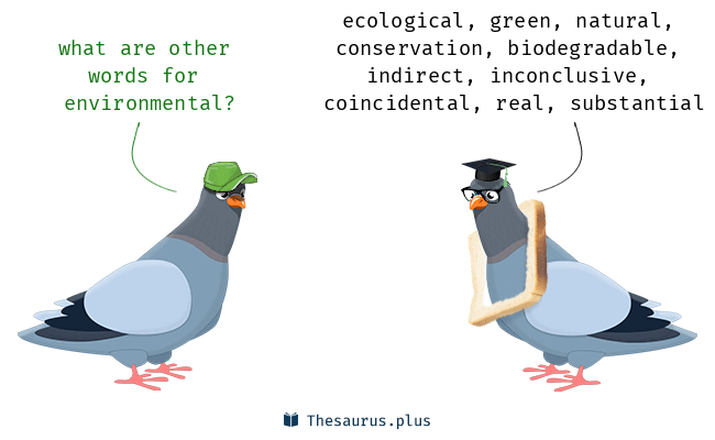 Synonyms for environmental