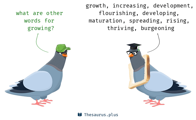 Synonyms for growing