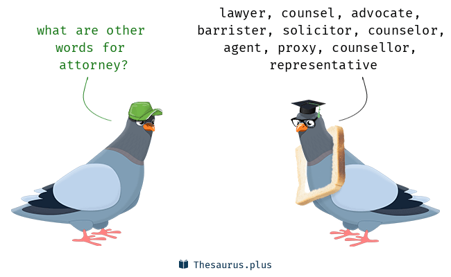 Synonyms for attorney