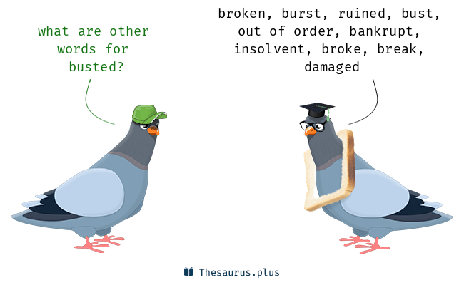 Synonyms for busted