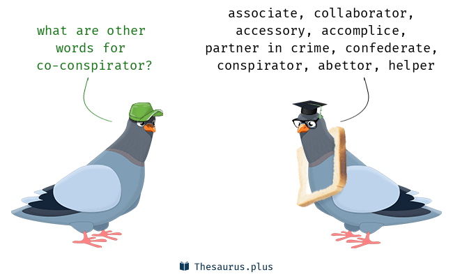 45 Co-conspirator Synonyms. Similar words for Co-conspirator.