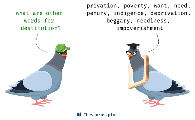 Synonyms for destitution