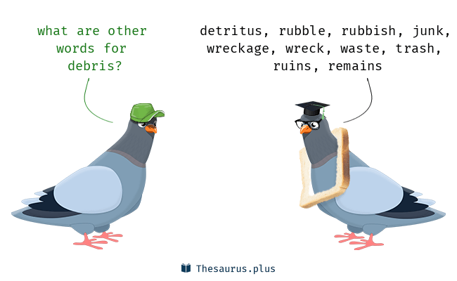 Synonyms for debris