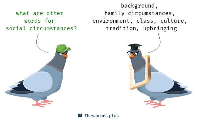 social circumstances synonyms and social circumstances antonyms
