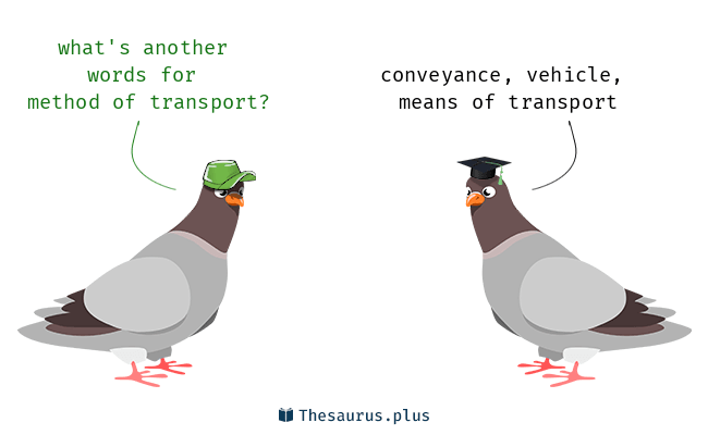3 Method of transport Synonyms  Similar words for Method of transport
