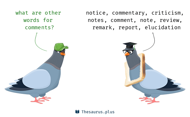 Synonyms for comments