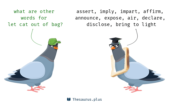 Synonyms for let cat out of bag