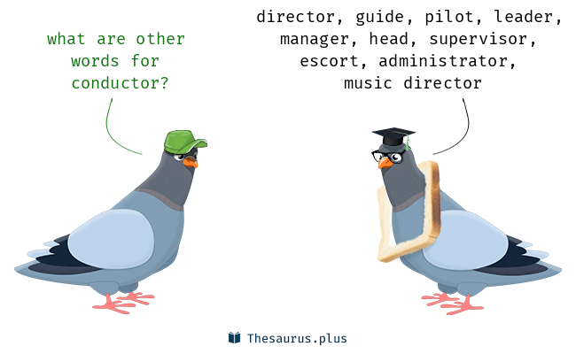 Synonyms for conductor