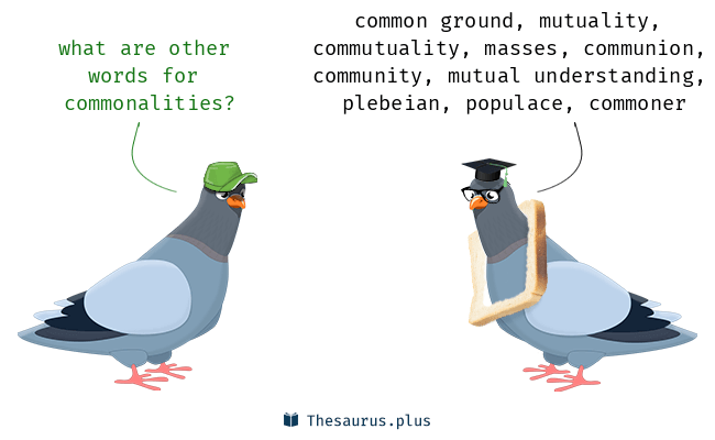 commonalities Synonyms, commonalities Antonyms