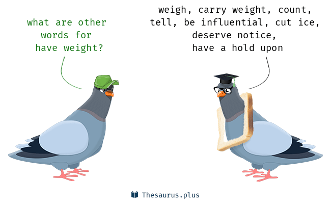 Synonyms for have weight