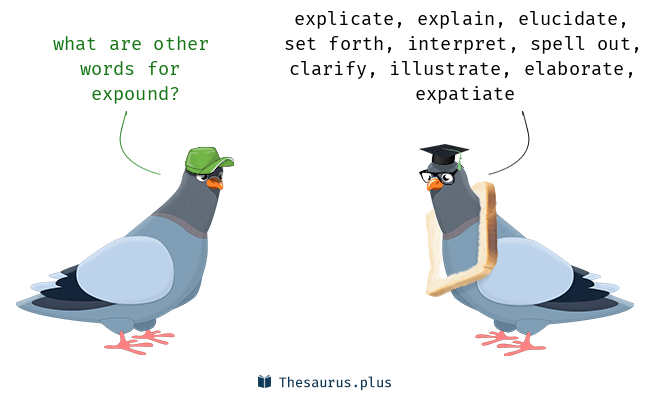 Synonyms for expound