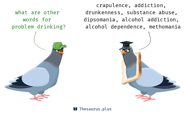 Synonyms for problem drinking