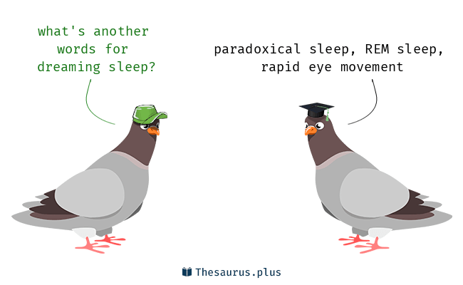 Terms Dreaming Sleep And Paradoxical Sleep Are Semantically Related