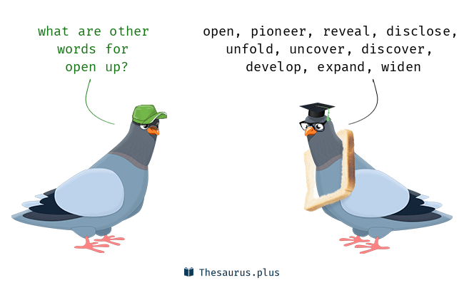 Synonyms for open up