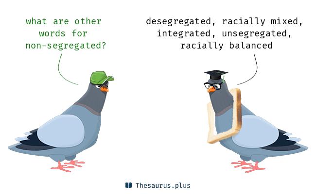 5 Non-segregated Synonyms. Similar words for Non-segregated.