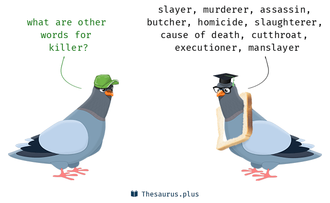 Synonyms for killer