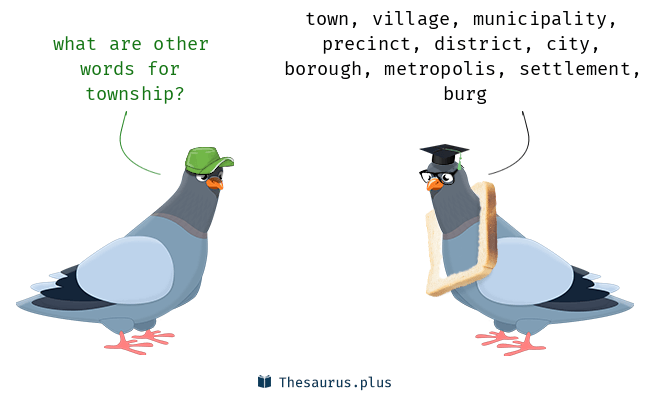Synonyms for township