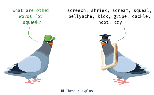 Synonyms for squawk