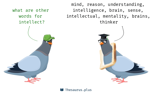 Synonyms for intellect