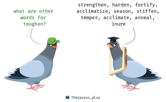 Synonyms for toughen