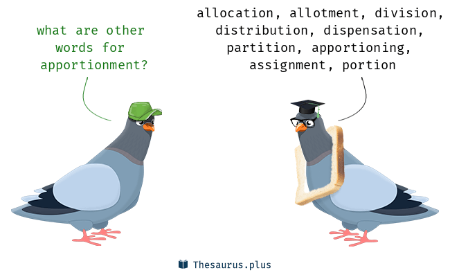 Synonyms for apportionment