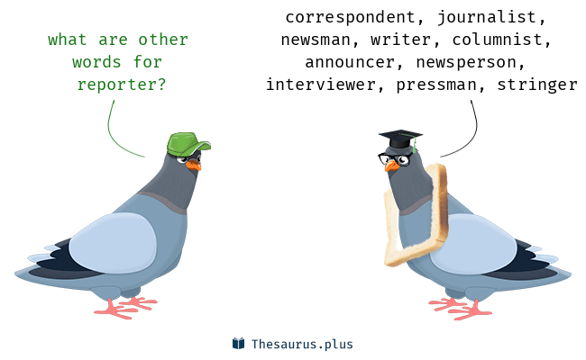 Synonyms for reporter