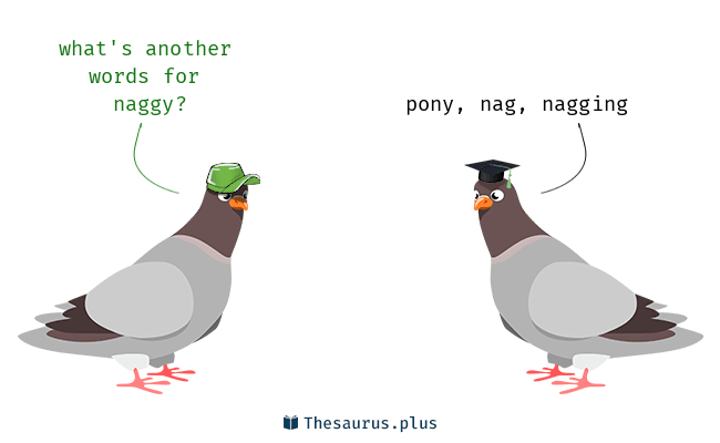 Naggy meaning