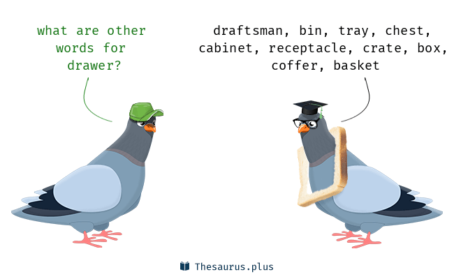 Synonyms For Drawer