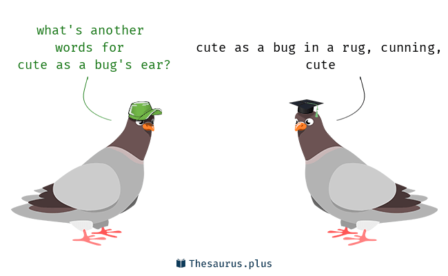 Cute as a bug's ear Synonyms and Cute