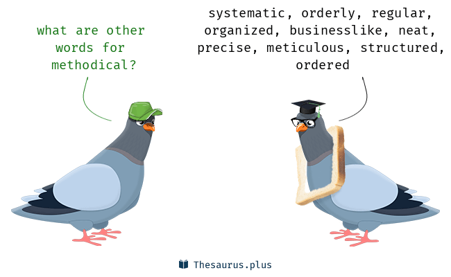 Synonyms for methodical
