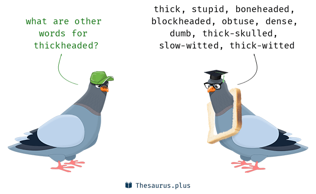 Synonyms for thickheaded
