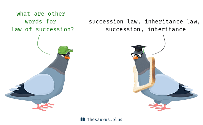 Synonyms for law of succession