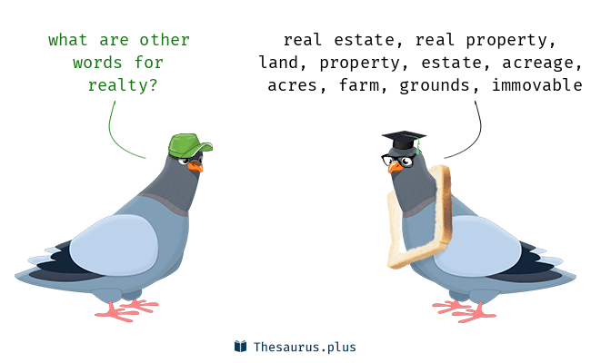 Synonyms for realty