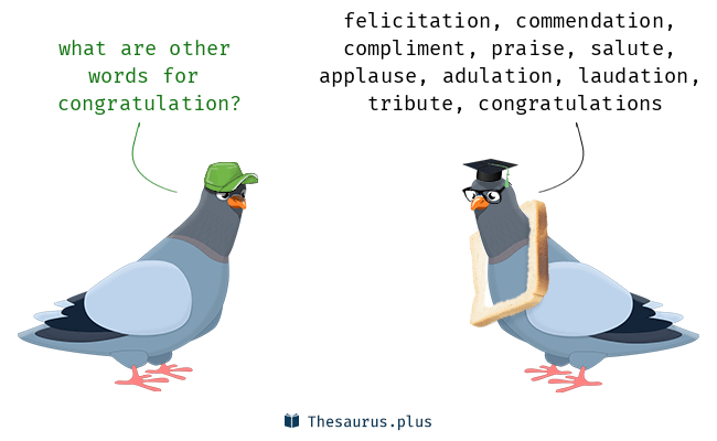 more 60 congratulation synonyms similar words for congratulation
