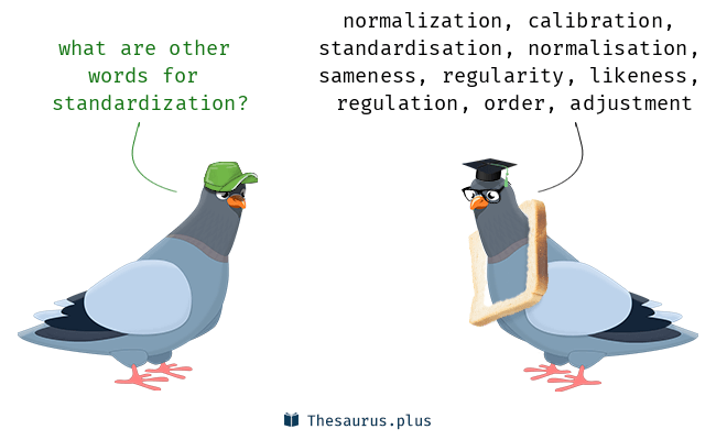 Synonyms for standardization