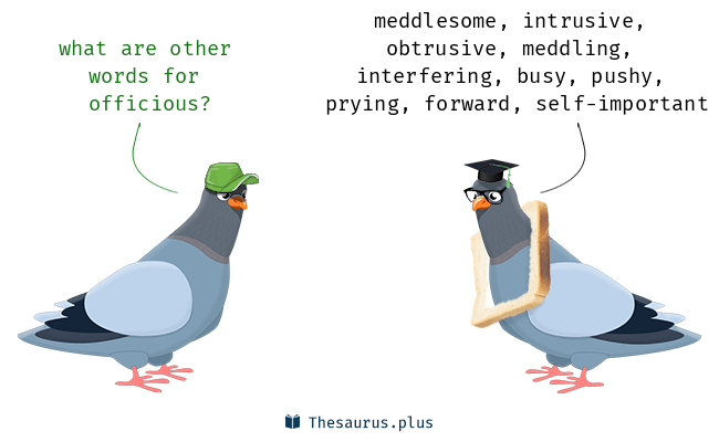 More 200 Officious Synonyms. Similar words for Officious.