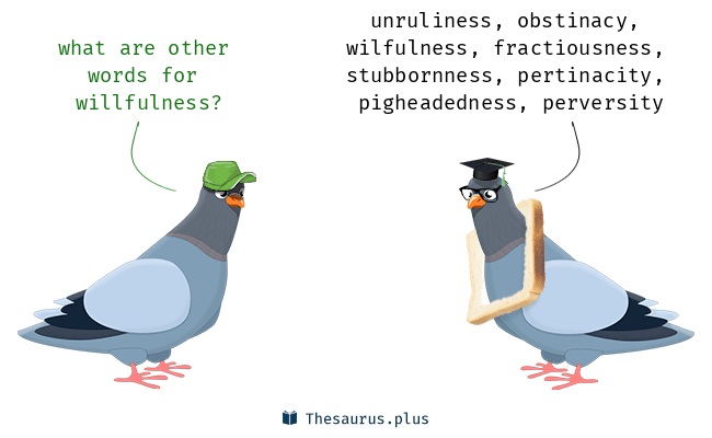 Synonyms for willfulness