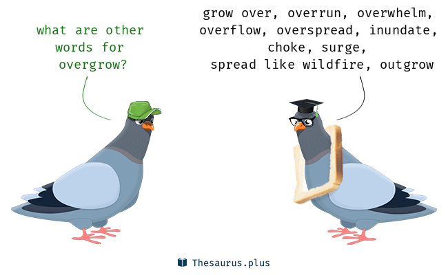 Meaning of outgrow