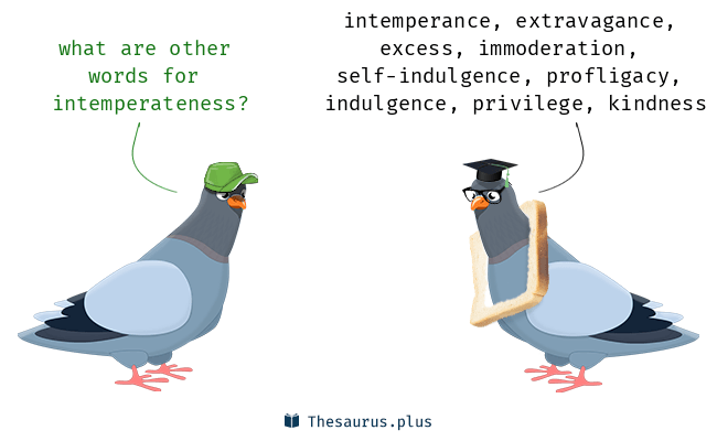 Synonyms for intemperateness