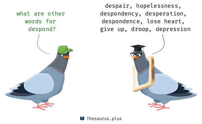 Synonyms for despond