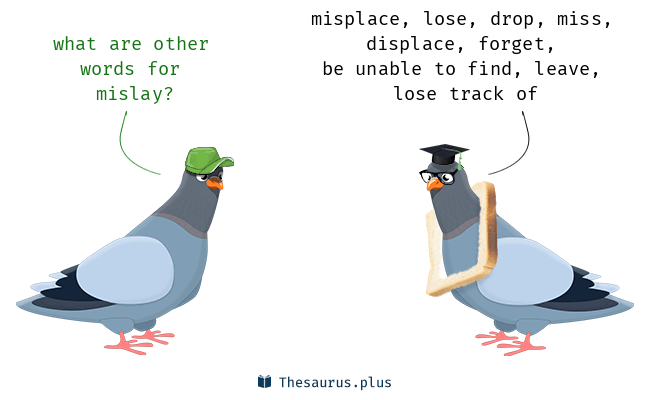Synonyms for mislay