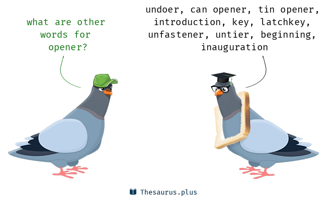 Synonyms for opener
