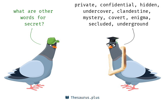 Synonyms for secret
