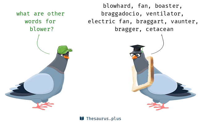 Synonyms for blower