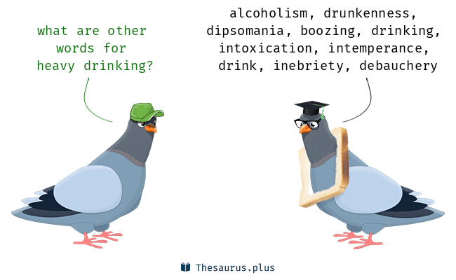 Synonyms for heavy drinking