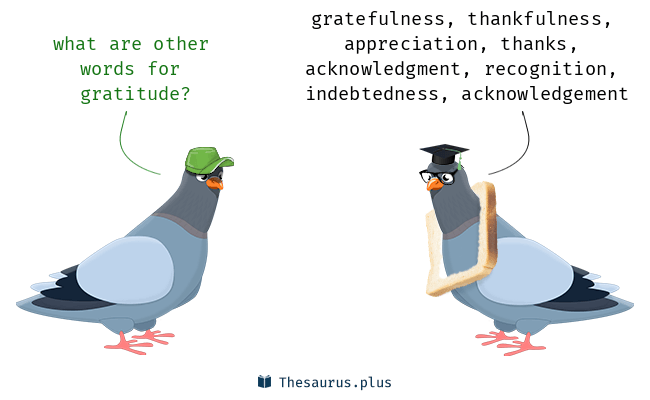 Synonyms for gratitude